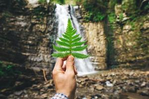 Green leaf of ferns in hand on background of rocks and waterfall photo