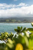 Tropical Hawaii landscape with mountain view photo