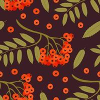 Nature s Seamless pattern with rowan tree twig. Vector illustration
