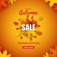 Special Autumn sale square with colorful leaves on an orange vector