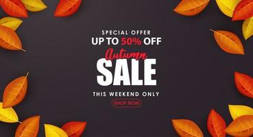 Special Autumn sale with realistic colorful leaves. vector