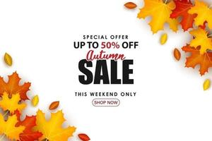 Special Autumn sale with leaves on the right and left. vector