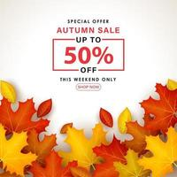 Special Autumn sale with leaves on white background. vector