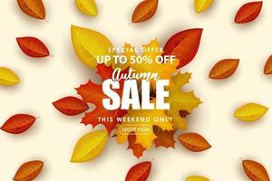 Special Autumn sale modern and clean background. vector