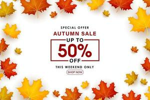 Special Autumn sale leaves scattered on a white background. vector