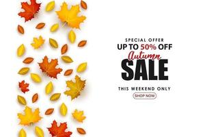 Special Autumn sale with the leaves neatly spread out. vector