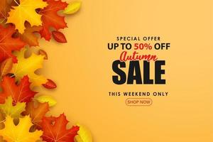 Special Autumn sale with stacked leaves on an orange background. vector