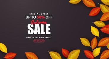 Special Autumn sale with small leaves on black background. vector
