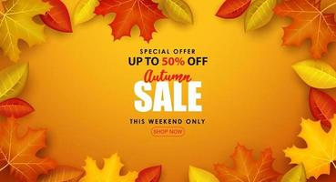 Special Autumn sale with writing surrounded by autumn leaves. vector