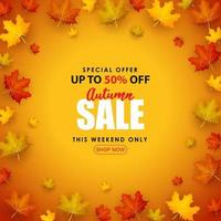 Special Autumn sale with 3d leaf fall illustration. vector