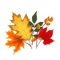 Autumn Falling Leaves Icon Isolated vector