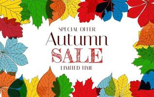 Autumn Sale Background Template with leaves. Special offer vector