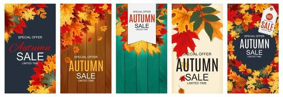 Abstract Autumn Sale Background with Falling Autumn Leaves Collection vector