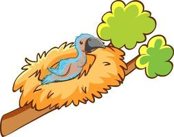 A baby bird in the nest cartoon animal on white background vector