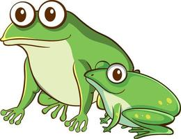 Mother and baby frog cartoon on white background vector