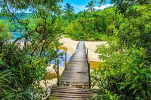 Mangrove and Pouso beach with bridge island Ilha Grande Brazil. photo
