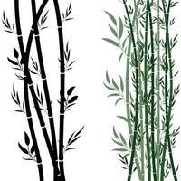 Sugarcane plant like organic vector green and black