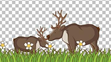 Moose standing on the grass field vector