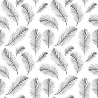 Bird Feather Hand Drawn Seamless Pattern Background vector