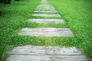 Stone Pathway in the park with green grass background. photo