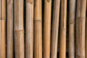 Bamboo fence texture with natural patterns background photo