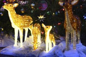 Deer Christmas glowing light figure photo