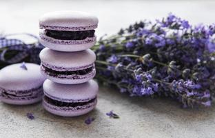 French macarons with lavender flavor photo