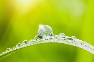 Globe with water drops photo