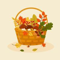 Autumn basket with mushrooms, leaves, rowan and acorns. vector
