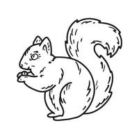 Sketch illustration of a squirrel with a nut vector