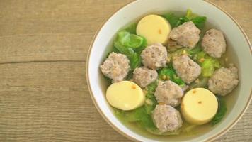 sopa de repollo con carne picada de cerdo y huevo de tofu video