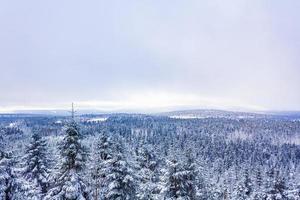 nevado en el paisaje de abetos helados brocken mountain harz alemania foto