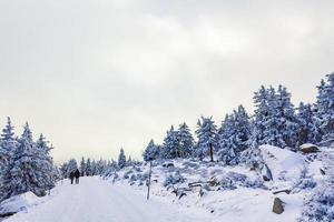 excursionistas personas en nevado en el paisaje montañas brocken harz alemania. foto