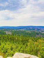 Forest with dead fir trees Brocken mountain peak Harz Germany photo