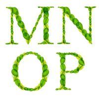 Letras del alfabeto vectorial hechas de hojas verdes de primavera. vector