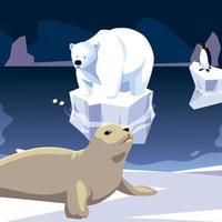 seal and polar bear animals north pole iceberg vector