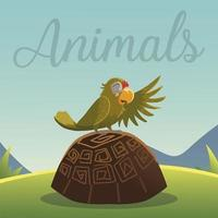 cartoon animals parrot on the turtle in grass nature vector