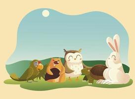 cartoon animals beaver rabbit owl parrot and turtle in the grass vector