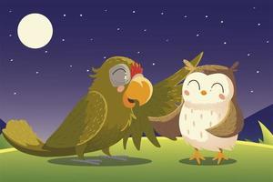 cartoon animals parrot and owl night nature vector