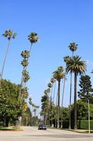 Beverly Hills, a luxury residential area in Los Angeles photo