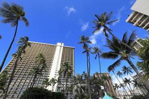 Luxury Hotels and Palm Trees at Waikiki Beach, Hawaii photo