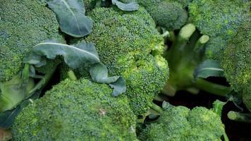 Fresh broccoli at traditional market photo
