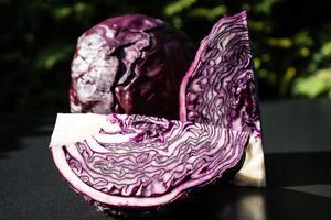 Sliced red cabbage Brassica oleracea photo