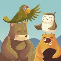 cartoon animals bear parrot beaver and owl wildlife vector