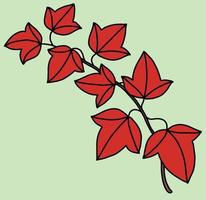 Simplicity ivy freehand drawing flat design. vector