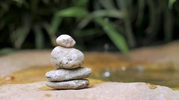 Japanese botanical zen garden with water drops and stones video