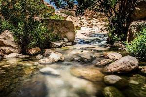 Small river in Israel photo