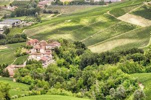Vineyards in the hilly region of Langhe, Italy, UNESCO site photo