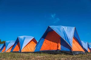 Tourist tent camping near pine tree forest photo