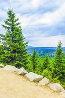 Forest panorama fir trees at Brocken mountain peak Harz Germany photo